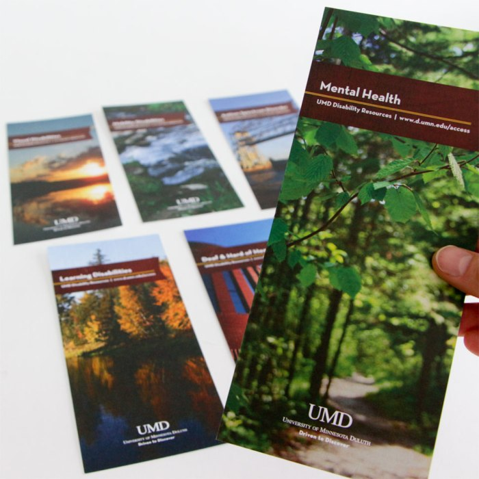Disability Resources Rackcards